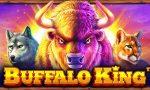 buffalo-king